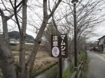 130320_奈良県明日香村 (3)