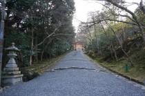 130323_日吉大社 (17)