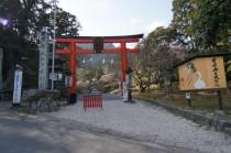 130323_日吉大社 (1)