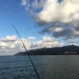 今年ぜんぜん釣れていないけど…また行ってしまいました